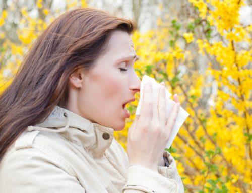 Die Grippewelle 2016 rollt an! Stellen Sie die Weichen für ein gesundes Büro!